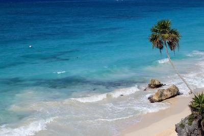 Karibik 8