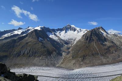Aletschhorn ist höher als alle anderen