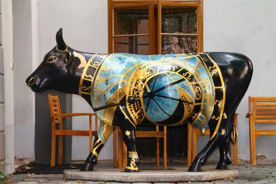 Was hat die Kuh...