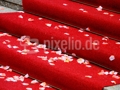 Roter Teppich ...