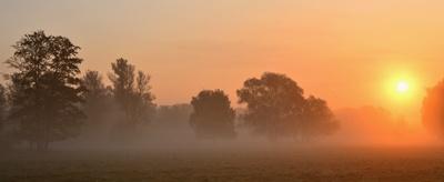 Morgenpanorama