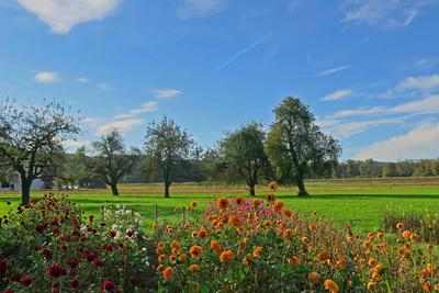 Farbenfrohe Landschaft
