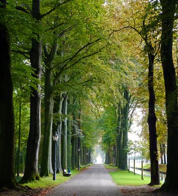 Herbstanfang im Schlosspark (Hochformat)