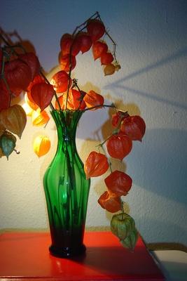 In grüner Vase