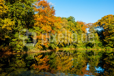 Herbst am See (2)