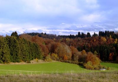 Herbstlich glänzt Wald und Flur