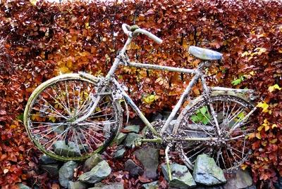 Fahrrad am Kanal