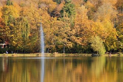 Herbst.Spiegel 03