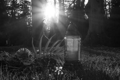 Ein Licht.... (SW)