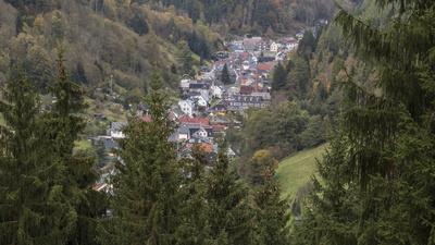 Mellenbach eingebettet im Thüringer Wald