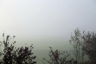 Nebelmorgen 22