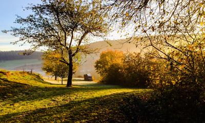 Morgensonne im Herbst