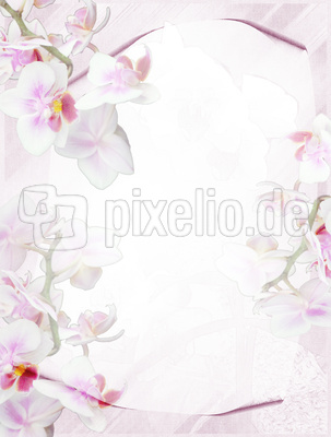 Briefpapier Orchidee hell