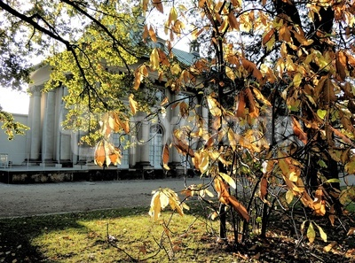 Herbst in Pillnitz