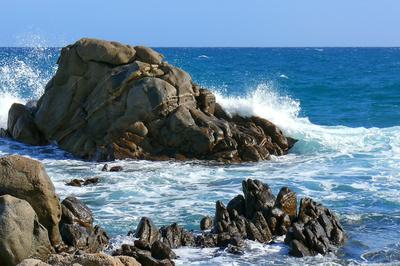 natürliche Wellenbrecher