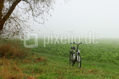 tour durch den nebel 2