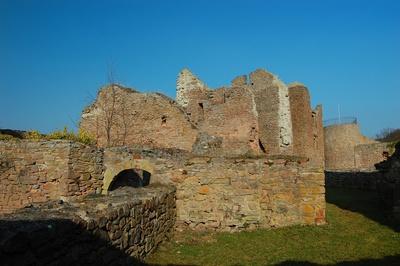 Burg Montfort #8