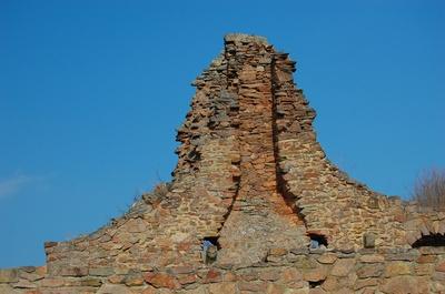 Burg Montfort, Kaminreste