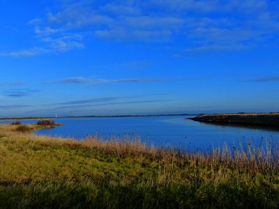 Am Meldorfer Hafen (Ditmarschen)