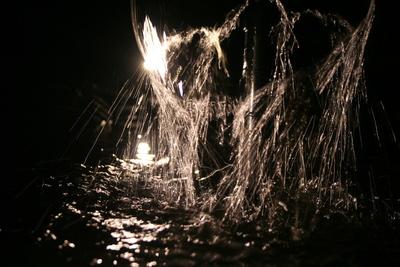 Lichtspiele am Teich