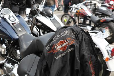 Harley Treffen