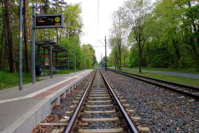 Strasenbahn Haltestelle im Grünen