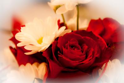 Blumen für Verliebte