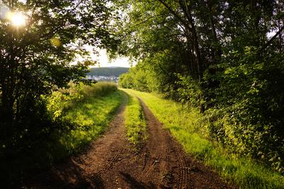Wandern Biken Joggen 2
