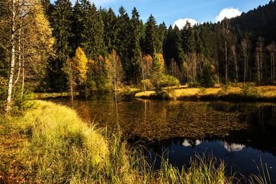 Ellbachsee Karsee im Herbst