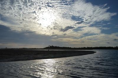 Meer mit Wolken im Gegenlicht mit Kokospalmen
