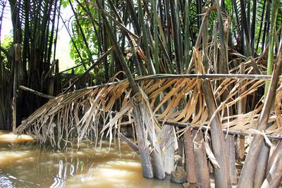 Mekong-Delta I