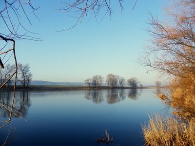 Ein Februarmorgen am Fluß