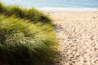 Strandweg mit Dünen und Meer