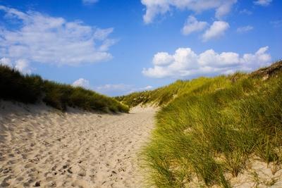 Strandweg mit Dünen_quer