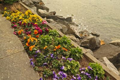 Farbe am Uferweg