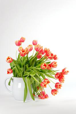 Frühlingsstrauß II