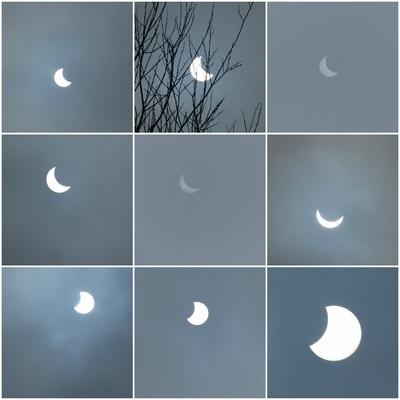 Sonnenfinsternis Collage