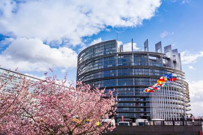 Europa-Parlament Straßburg 2