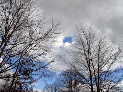Himmel, Wolken und Baumspitzen