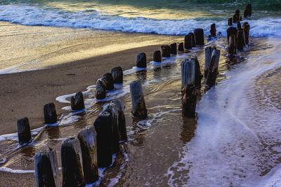 Alte Buhnenstümpfe am Strand