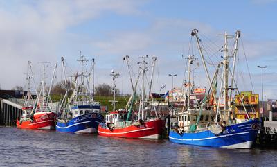 Fischkutter im Siel-Hafen , . . . .