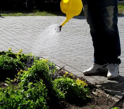 Gartenarbeit Giessen