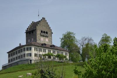 Schloss Uster (Schweiz)