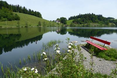 Idylle am Rotsee