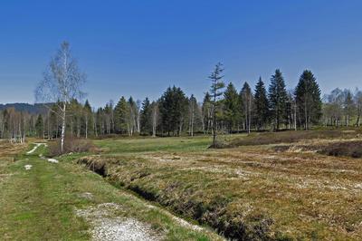 Naturschutzgebiet Schwantenau