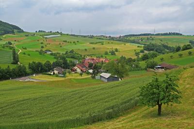 Weinbauerndorf Sulz