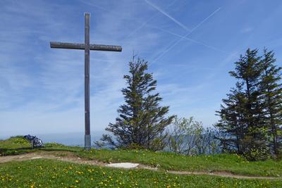 Auf dem Wildspitz (1580 m)