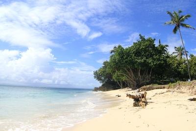 Bacardi Insel 1