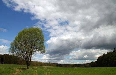 Grabfeld.Landschaft