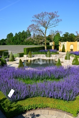 Lavendelgarten